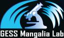Laboratorul GESS Mangalia